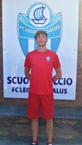 Andrea Faccioli